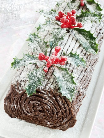 Homemade christmas chocolate yule log. Shallow dof.