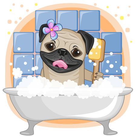 Cute cartoon Pug Dog in the bathroom