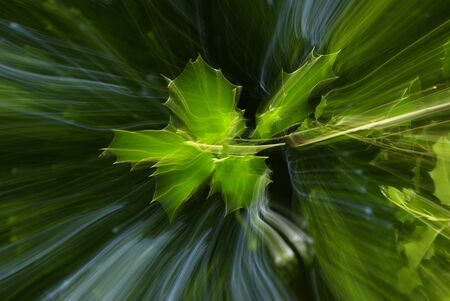 abstract effects on tree leaves, shigning light and movement. mystic nature, forest spirits.
