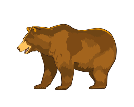 Illustration pour Vector illustration of bear Grizzly isolated on white background - image libre de droit