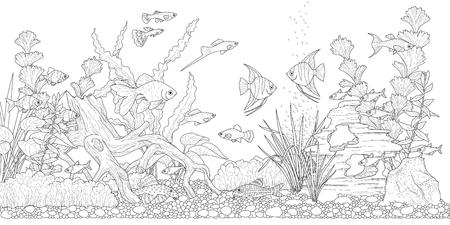 Illustration pour Rectangular horizontal aquarium with plants, accessories and fishes. Monochrome illustration  of underwater landscape for coloring - image libre de droit