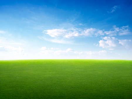 Photo pour Image of green grass field and bright blue sky - image libre de droit