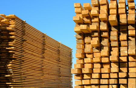 Foto de wooden boards stacked at the timber yard - Imagen libre de derechos