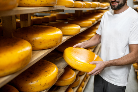 Worker taking cheese wheel at the storage during the cheese aging process. Close-up view with no face