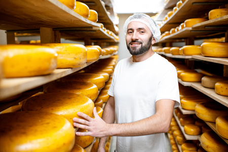 Cheese maker at the storage with shelves full of cheese wheels during the aging process