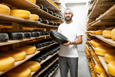 Worker holding cheese wheel covered with black wax at the storage with shelves full of cheese during the aging process