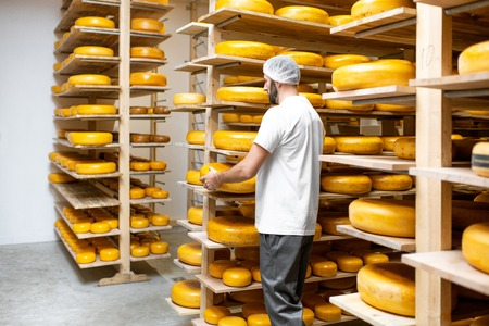 Man storage with shelves full of cheese wheels during the aging process