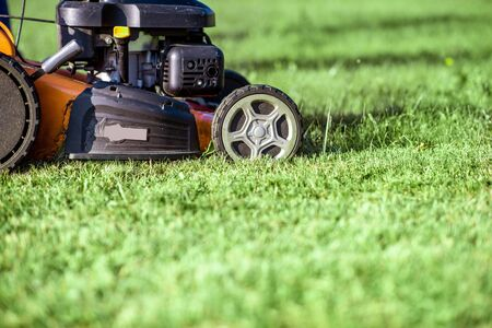 Foto de Gasoline lawn mower cutting grass, close-up with copy space. Backyard care concept - Imagen libre de derechos
