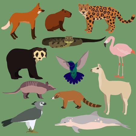 Illustration pour Vector set of cartoon south american animals. - image libre de droit