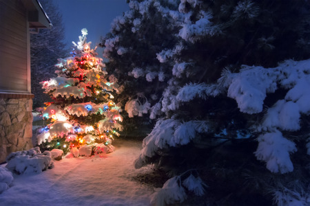 A heavy snow falls quietly on this Christmas Tree accented by a soft glow and selective blur illustrating the magic of this Christmas Eve night time scene.