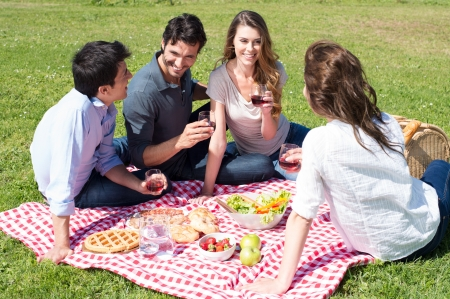 Group Of Happy Young Friends On Vacation Enjoying Wine At Picnic