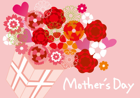 Carnation of Mother \ 's Day