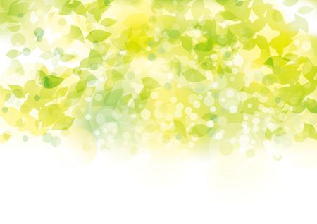 Illustration pour Leaves exposed to light - image libre de droit