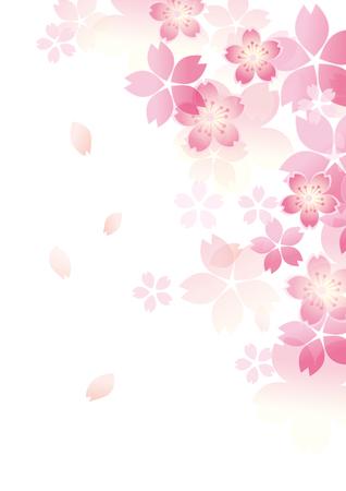 Illustration pour Gentle sakura blossoms illustration. - image libre de droit