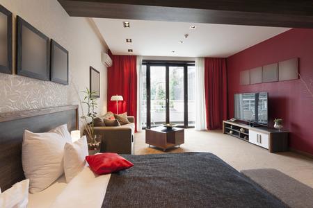 Luxury studio apartment interior