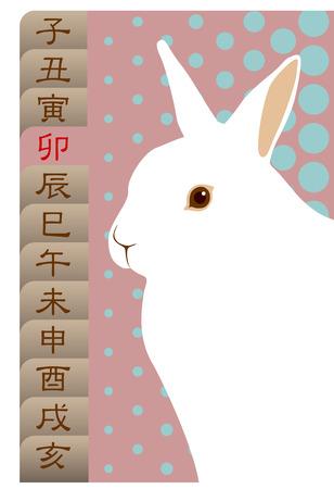 Rinaokukawa101200086