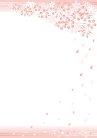 Rinaokukawa101200241