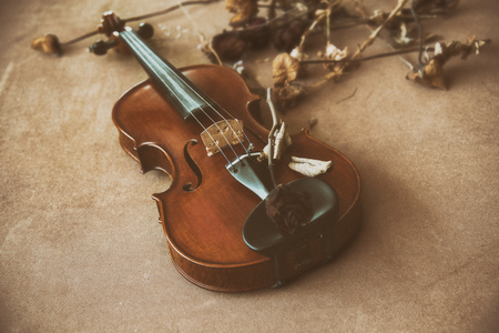 The classic old film design background of violin with dried flower put on wooden board,vintage and art style,grainy film tone,abstract art design,blurry light around.