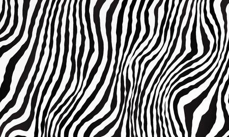 Illustration pour Monochrome black and white background. Zebra pattern backdrop. Vector illustration for your graphic design. - image libre de droit