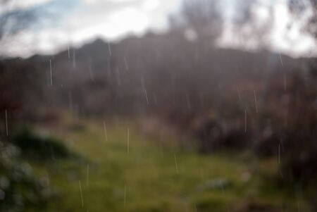 Foto per Rain in the country - Immagine Royalty Free