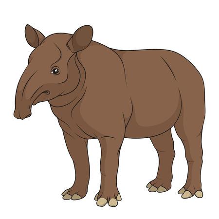 Illustration pour Color illustration of a plain tapir. Isolated vector object on white background. - image libre de droit