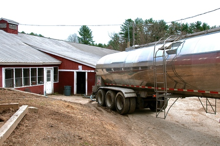 Photo for A stainless steel tanker truck backs up to a barn to collect the milk from a dairy operation. - Royalty Free Image