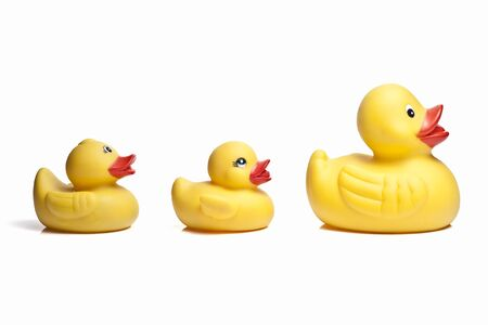 Isolated rubber ducks