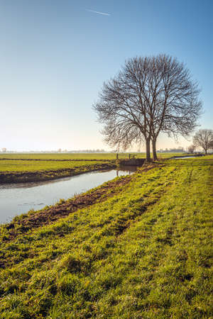 Photo pour Typical polder landscape near the village of Noordeloos in the Dutch region of Alblasserwaard, province of South Holland. It is a cold but sunny day. A thin layer of ice is on the water surface. - image libre de droit