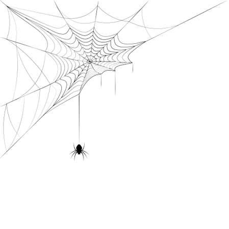Illustration pour spider on corner web. Design element for Halloween. - image libre de droit