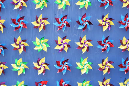 A group of pinwheels screwed to a blue wall.