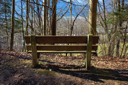 Photo for Place to relax in a forest in Vaduz in Liechtenstein 17.2.2021 - Royalty Free Image