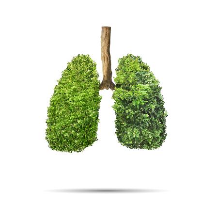 Photo pour Green leaves shaped in human lungs. Conceptual image - image libre de droit