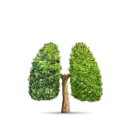 Photo for Green tree shaped in human lungs. Conceptual image - Royalty Free Image
