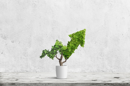 Photo pour Potted green plant grows up in arrow shape over blue background. Concept business image - image libre de droit