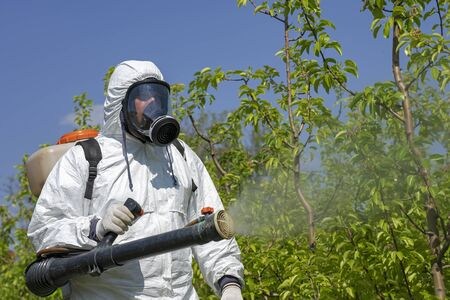 Foto für Man in Coveralls With Gas Mask Spraying Orchard in Springtime. Farmer Sprays Trees With Toxic Pesticides or Insecticide. - Lizenzfreies Bild
