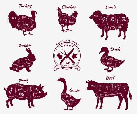 Set a schematic view of animals for butcher shop. Cow and pork, cattle and pig, chicken and lamb, beef and rabbit, duck and swine, goose and turkey, meat illustration