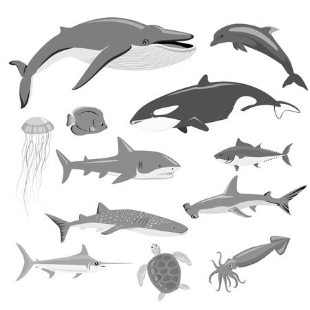 Ilustración de Marine fauna set of aquatic animals. Aquatic fauna, ocean or sea fish wildlife fauna, underwater aquarium exotic life fauna, dolphin water wild vector illustration isolated on white - Imagen libre de derechos