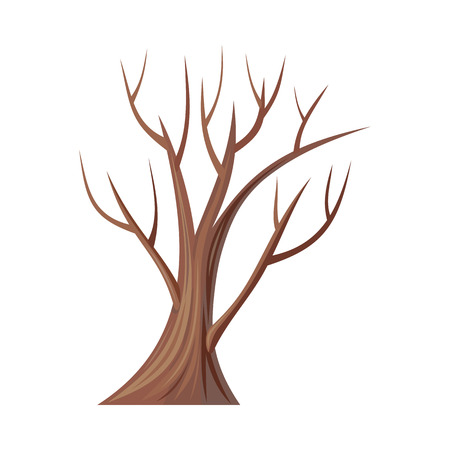 Ilustración de tree. Oak isolated on white. Bare tree without leaves. Oak is a tree or shrub in the genus Quercus of the beech family, Fagaceae.  Part of series of different trees. illustration - Imagen libre de derechos