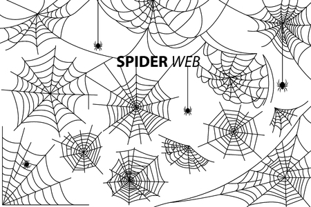 Illustration pour Spider web collection of vector illustrations with inscription isolated on white background. Black silhouettes of small multi-legged arthropods hanging - image libre de droit