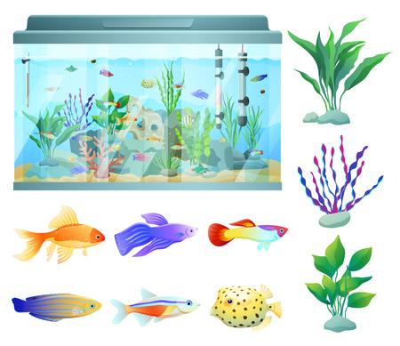 Illustration pour Aquarium in Glass Container Vector Illustration - image libre de droit
