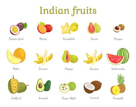 Indian Fruits Set India Food Vector Illustration