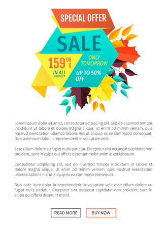 Sale special exclusive offer poster. Only tomorrow unique reduced price decrease cost promotion. Shopping proposition autumnal sellout deal vector