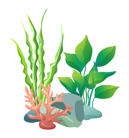 Illustration pour Green vegetation of deep sea. Decorations to put in aquariums. Stones with holes and plants different seaweed set isolated on vector illustration - image libre de droit
