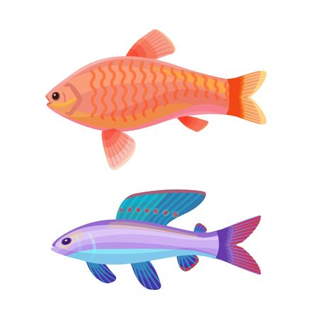 Aquarium goldfish with comet-like tail and unusual blue creature with red spotted dorsal fin cartoon vector illustration. Colorful depiction on white.