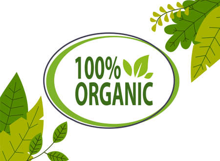Natural product. 100 organic poster or banner. Eco friendly concept.