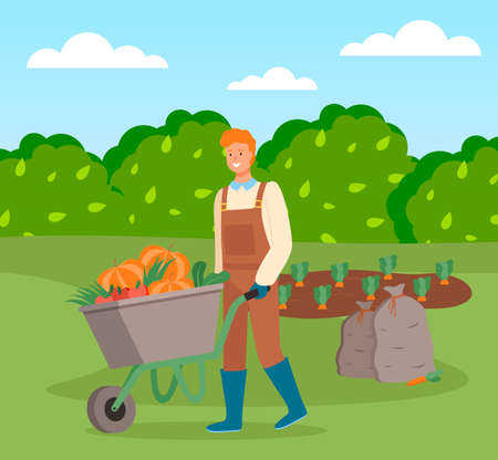 Illustration pour Farmer wearing in overalls and rubber boots pushing a wheelbarrow full of vegetables. Agricultural worker, autumn harvest. Man going with vegetables in cart, harvesting tomato, pumpkin, carrot - image libre de droit