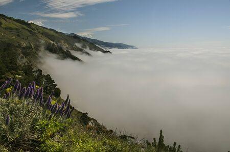 Mist on Big Sur
