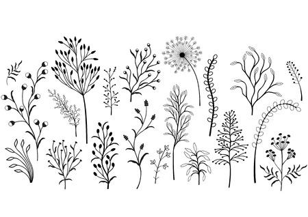 Illustration pour Set of wild plants, Black and white illustration. - image libre de droit