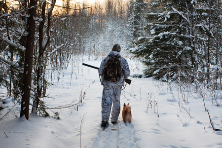 hunter on the skis on winter hunting