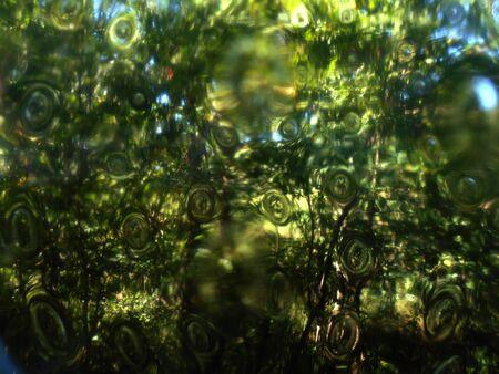 Strange view trought glass